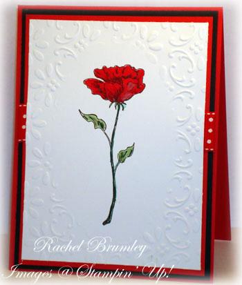 Bloomin' Beautiful Red blck