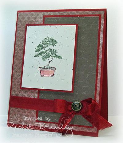Plant-Hope copy