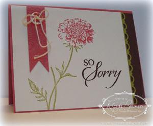 So-Sorry copy