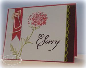 So-Sorry-1 copy