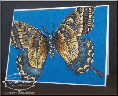 ASwallowtail